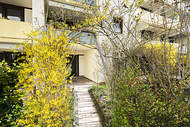 Verkauft: Modernisierte Erdgeschosswohnung mit sonniger Süd-/West-Terrasse – Bogenhausen 12