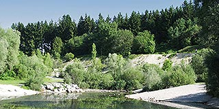 Immobilienmakler München-Waldtrudering